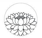 lotus_drawing